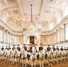 Bécsi lovasbemutató
